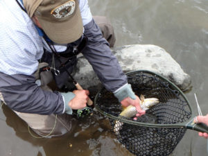 Fly Fishing for Vets Rivers of Recovery