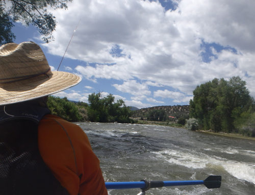 A Guide's Perspective: Greg Felt Navigates Fly Fishing Trips for Veterans